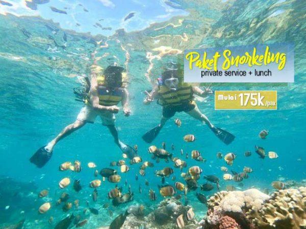 Paket Snorkeling Murah di Nusa Penida Private Service Include Lunch